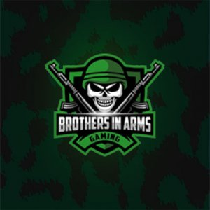 Brothers In Arms Gaming